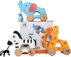 Wooden Pull Along Toy Set