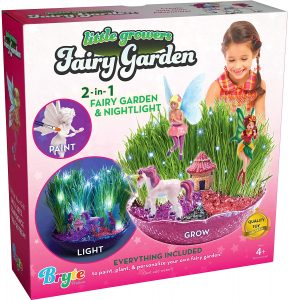 Little Growers Fairy Garden Craft Kit